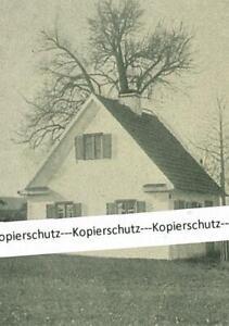 Astersbach-Das-Kleinhaeuschen-sog-Hoeges-der-Dorfnaeherin-um-1920-W-22-16