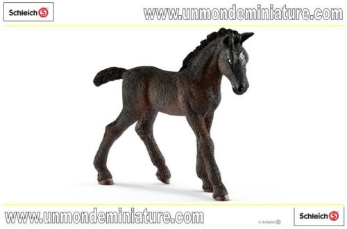 SC 13820 Horse Club Poulain Lippizan  SCHLEICH