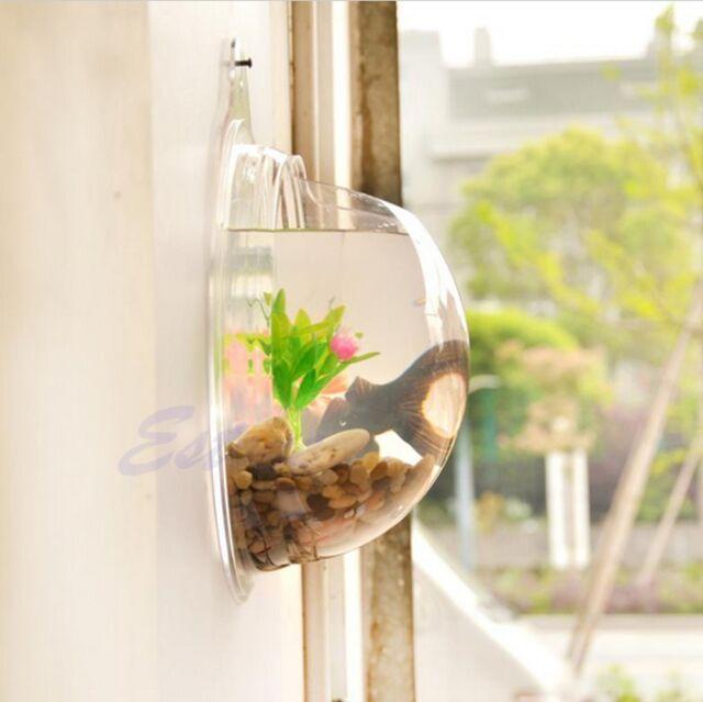 Plant Wall Hanging Mount Bubble Aquarium Bowl Fish Tank Aquarium Home Decoration