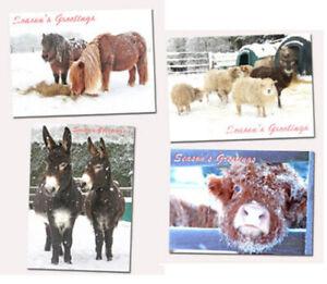 Christmas-Cards-x-8-Hillside-Animal-Sanctuary-Winter-Scenes