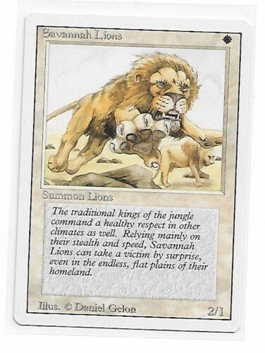 Magic The Gathering ~ 1x Savannah Lions ~ REVISED ~ M//NM