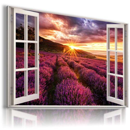 TUSCANY PURPLE FIELD LAVENDER FLOWERS 3D Window View Canvas Wall Art W562 MATAGA
