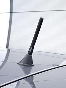 FORD-Negro-Antirrobo-Antena-Richbrook-Oficial-Matricula