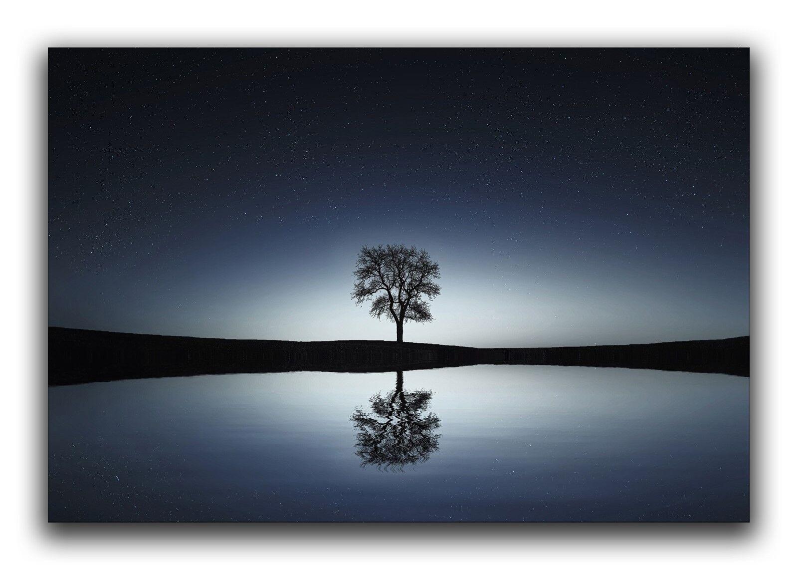 Leinwand Bild Wandbild Keilrahmenbild See Baum Natur