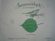 Sommervögel, 1908, Jugendstil Märchen, Ernst Kreidolf