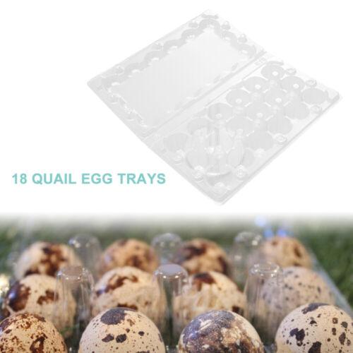 50X Convenient Reusable Transparent 18 Grids Quail Egg Carton Store Shop Home