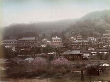 c1880s, KUSAKABE Kimbei, MARUYAMA, kyoto japan, peach BLOSSOM albumen photograph
