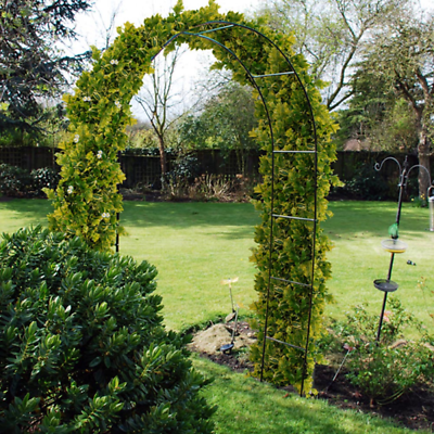 BLACK METAL POWDER COATED GARDEN ROSE ARCH CLIMBING PLANTS TRELLIS 2.4M ARCHWAY