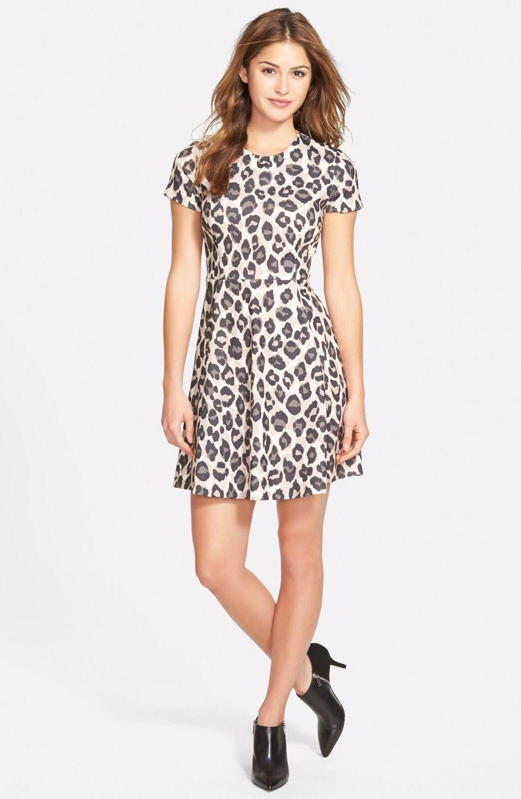 Eliza J  Print Ponte Fit & Flare Dress (size 14)
