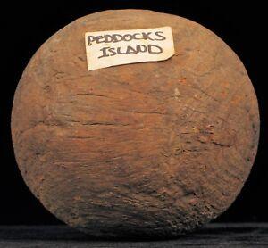 REVOLUTIONARY WAR PEDDOCKS ISLAND BOSTON HARBOR CANNONBALL QUAKER GUN LAWN BALL