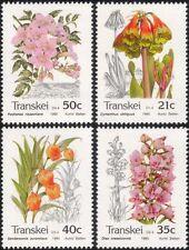 Transkei 1990 Orchid/Lily/Flowers/Nature/Plants/Environment 4v set (b9977)