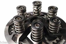 Ducati Clutch SPRINGS - BOLTS - CAPS 748 749 916 996 998 999 Monsters 900