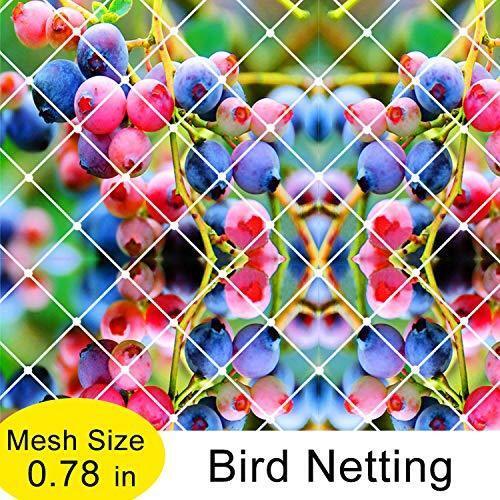 25/'x50/' Garden Bird Netting Anti Bird Protection Net for Fruit Vegetables Flower