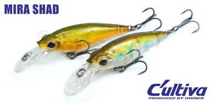 Owner Cultiva Bug Eye Bait fishing lures original range of colors