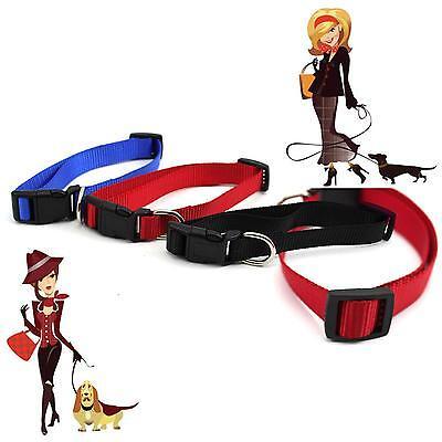 Adjustable Nylon 2.0*50cm 1.5*45cm Harness Collar Leash Lead  For Pet Dog Cat