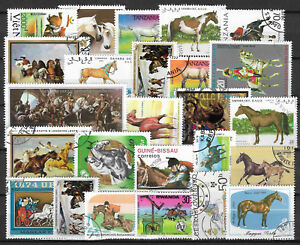HORSES-Collection-Packet-of-25-Different-WORLD-Stamps-featuring-HORSES-Lot-1