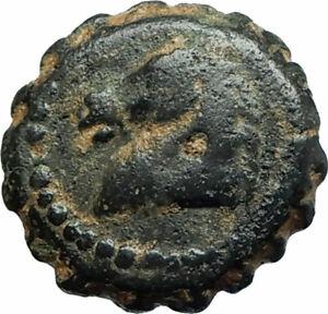 DEMETRIOS-I-Soter-RARE-R3-Ancient-Seleukid-Greek-Coin-HORSE-ELEPHANT-i75755