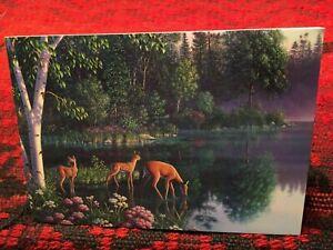 Northwoods Theme ID#1387 Leanin/' Tree Birthday Card