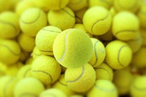 24-Tennis-Balls-Sports-Tournament-Outdoor-Fun-Cricket-Beach-Dog-Activity-Game