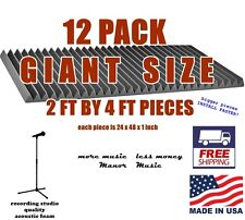 GIANT SIZED 12 pack 24x48x1 WEDGE charcoal grey acoustic foam panels soundproof