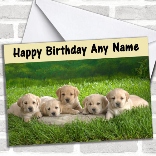 Five Labrador Puppy Dogs Birthday Customised Card