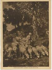 ANTIQUE VICTORIAN SHEEP HERD SHEPHERDESS TREES LANDSCAPE PHOTOGRAVURE ART PRINT