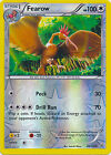 Fearow Uncommon Reverse Holo Pokemon Card XY Roaring Skies 66/108