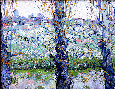 Vincent van Gogh Orchard in Bloom reproduction 8X12 canvas print poster