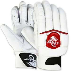 Spartan-DW-Gayle-Players-Edition-Batting-Gloves