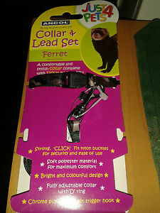 Just-4-Pets-Collar-amp-Leads-Set-For-Ferrets