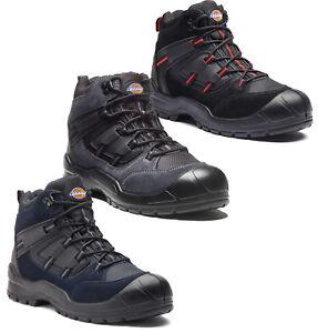 official photos 84220 b3016 Details zu Dickies Workwear Everyday Sicherheitsschuhe S1P Arbeitsschuhe  Sicherheitsstiefel