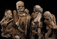Incorniciato stampa-MUMMIFIED resta (corpo umano Gotico Horror Picture Poster Art)