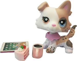 Lps Pet New Custom Spot Short Hair Cat OOAK with lps Accessories