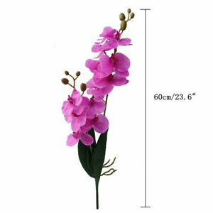 Artificial Flower Real Touch Latex 2 Branch Orchid Leaves Wedding Decoration