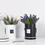 Cajas-de-flores-ramo-de-tipo-de-mano-redonda-Living-jarrones-floristeria-Flor-Planta-Cajas miniatura 5