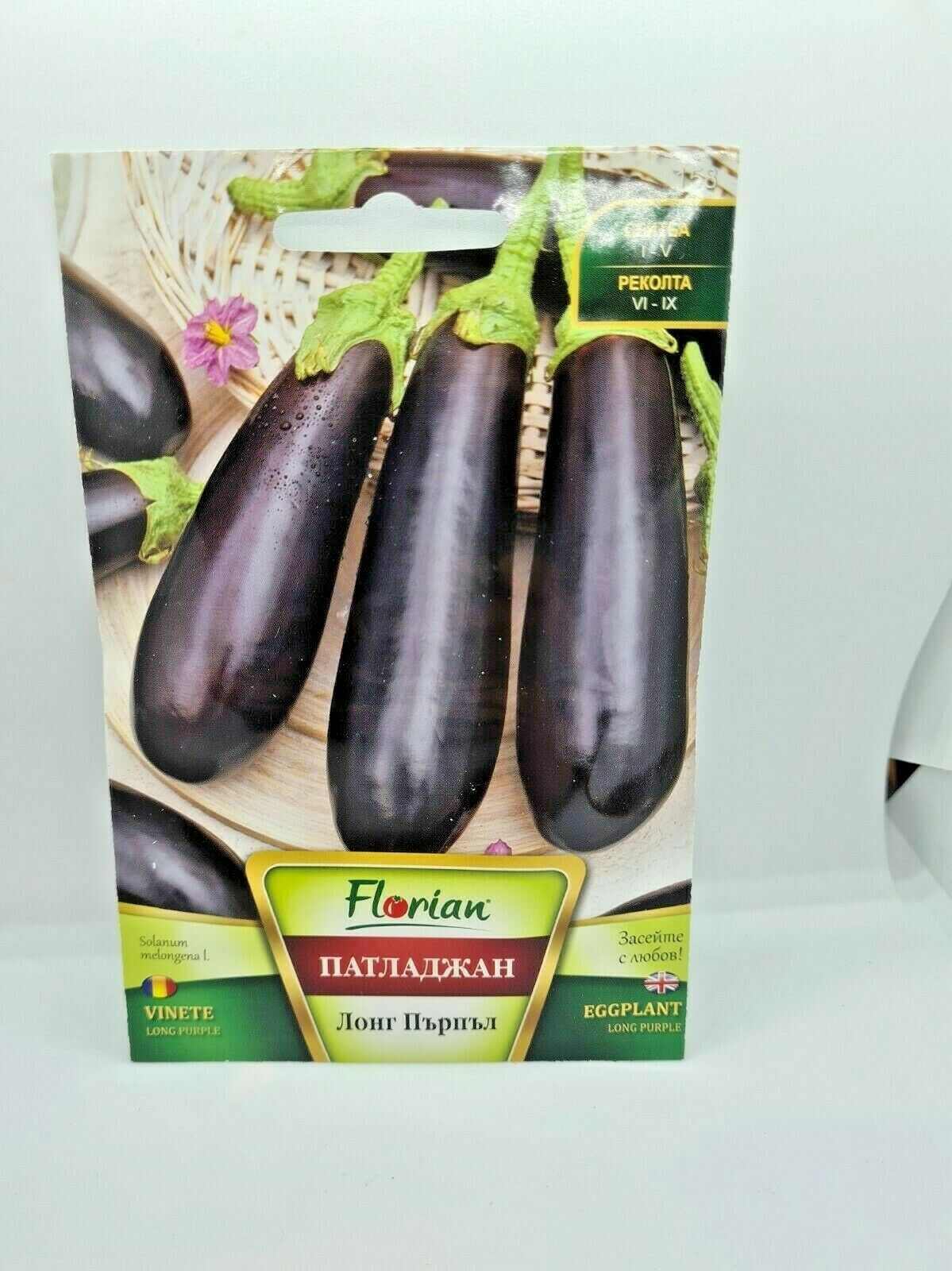 Long Purple Eggplant Aubergine Dark Vegetable apx. 270 Seeds -25cm long Fruit