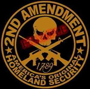 Vinyl 2nd Amendment America Original Homeland Security PICK COLOR SIZE Second