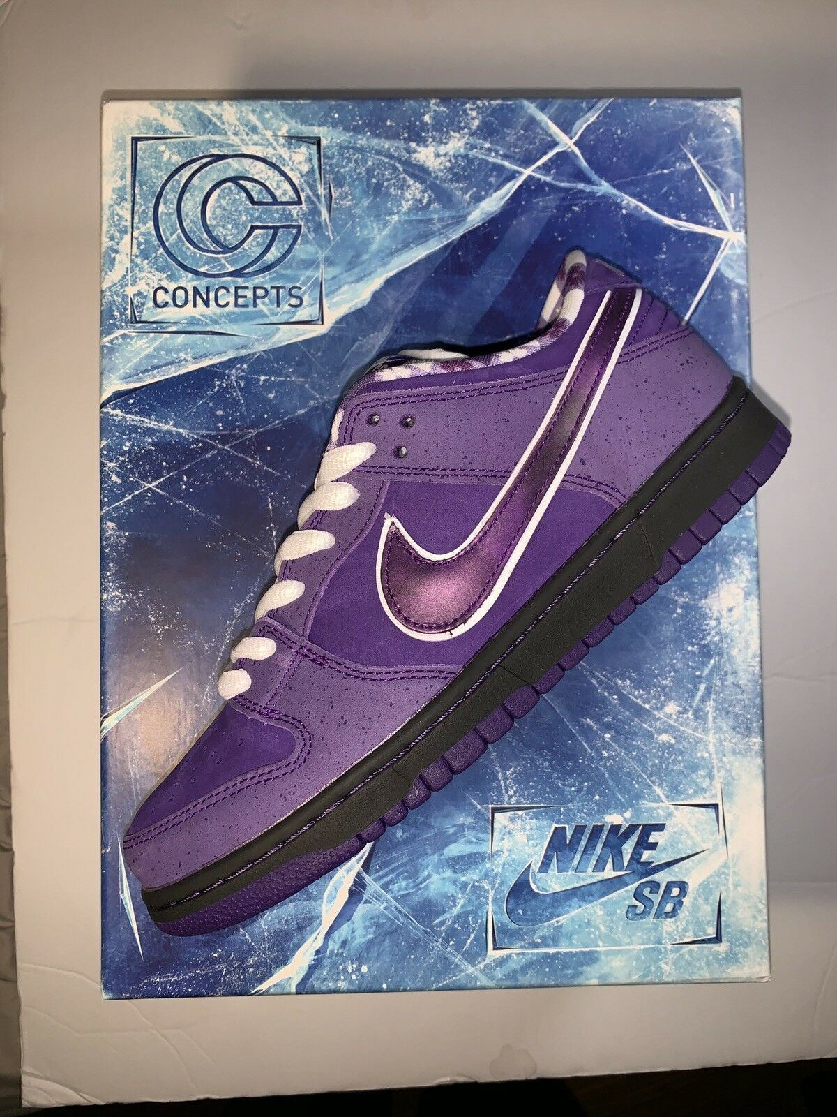 "Nike Sb x Concepts ""Purple Lobster"" Special Packaging (SIZE 7)"