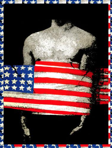 Quality POSTER.American Flag.Patriotic.Room Office Home Decor art print.q644