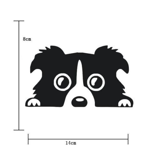 1PC Funny JDM Dog Puppy Lying On The Car Lower Fast Vinyl Car Sticker Decal 2017