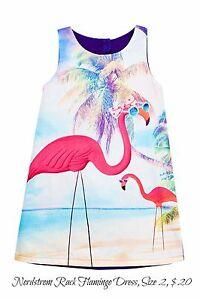 Toddler-Girls-Nordstrom-Rack-Pumpkin-Patch-Flamingo-Beach-Dress-Size-2