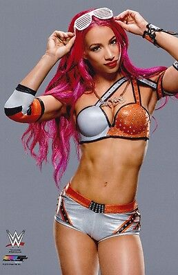 WWE Divas WCW WWF Bikini Swimsuit BRIE BELLA Poster #04 Multiple Sizes