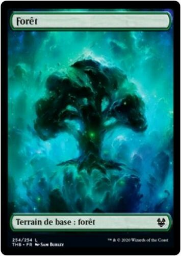 Forest//Forêt MTG Magic THB FOIL French//VF #254