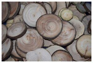 50-5-gratis-D-2-5-cm-Astscheiben-Baumscheiben-Holzscheiben-Deko-basteln