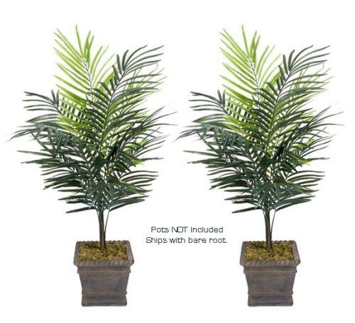 TWO 4/' Dwarf Areca Palm Artificial Trees Silk Plant 611