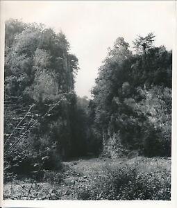 SAINTE-ENGRÂCE c. 1935 - Gorges de Kakuetta Pyrénées-Atlantiques Div 4390 L6yFT5Wc-09152604-602678820