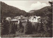 ALTIPIANO DEL CANSIGLIO - PIAN OSTERIA - FARRA D'ALPAGO (BELLUNO) 1973