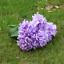 6-Koepfe-1-Bund-kuenstliche-Blumenstrauss-Hortensie-Party-Home-Hochzeit-Dekor Indexbild 21