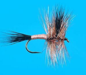 size 10 Brown Wulff 6 pcs