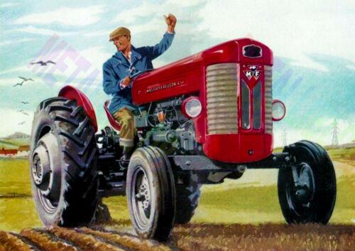 Massey Ferguson 65 Tractor-Publicidad-cartel (A3) - (3 para 2 Oferta)